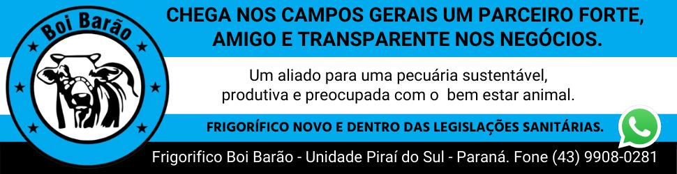 BOI BARÃO
