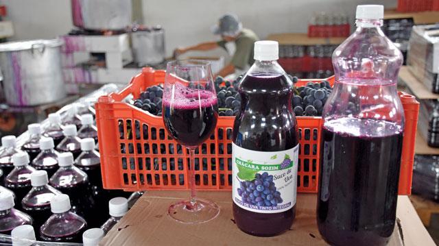Como é feito o Suco de Uva da Chácara Sozim