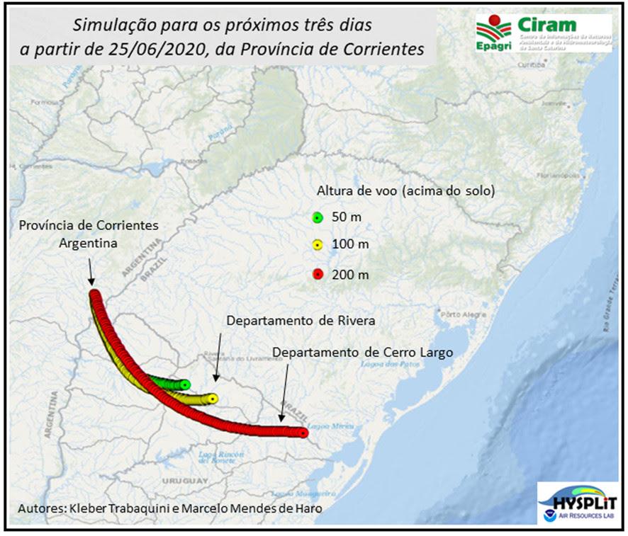 Nuvem de gafanhotos: pesquisadores da Epagri preveem que insetos devem chegar ao Uruguai