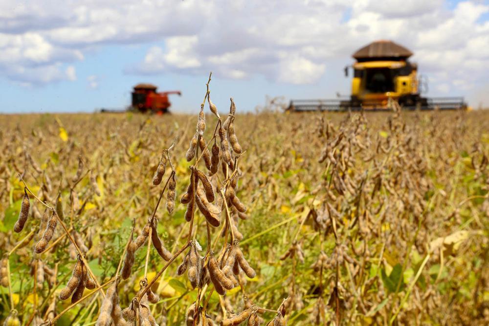 Paraná pode colher 40,9 milhões de toneladas de grãos