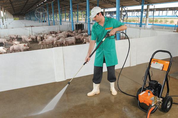 A série J18000, que aquece a água até 120ºC e limpa ambientes onde a água aquecida é fundamental para desengordurar e diluir sujeiras incrustadas, atendendo produtores e indústrias que manipulam carnes – suínos e aves.