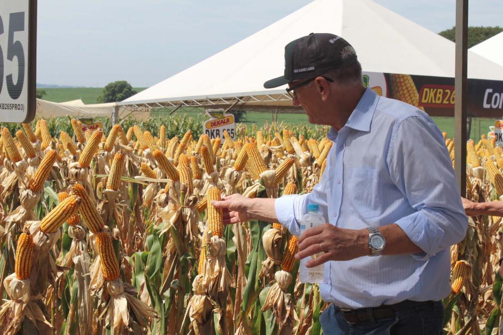 O secretário estadual da Agricultura e do Abastecimento, destaca esse tipo de evento é importante para o avanço da ciência, aperfeiçoando o trabalho dos agricultores, tornando-os cada vez mais competentes e competitivos. Norberto Ortigara,