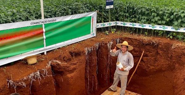 Foi aberta uma trincheira de aproximadamente 1,5 metro de profundidade em que será possível visualizar as características e o comportamento das raízes de soja em solo compacto e outro sem compactação .