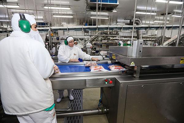 A tendência é de que o Estado cresça ainda mais, e dentro de três ou quatro anos lidere produção de carne suína no Brasil, por exemplo. Acredita o secretário de Estado da Agricultura e do Abastecimento, Norberto Ortigara.