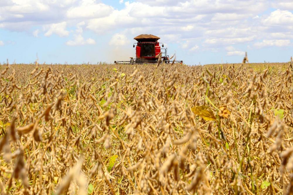 Responsáveis pela maior participação no faturamento, os produtos da agricultura podem somar R$ 38,8 bilhões ao valor total do VBP, uma participação próxima a da safra 2017/2018, que chegou a R$ 39,3 bilhões.