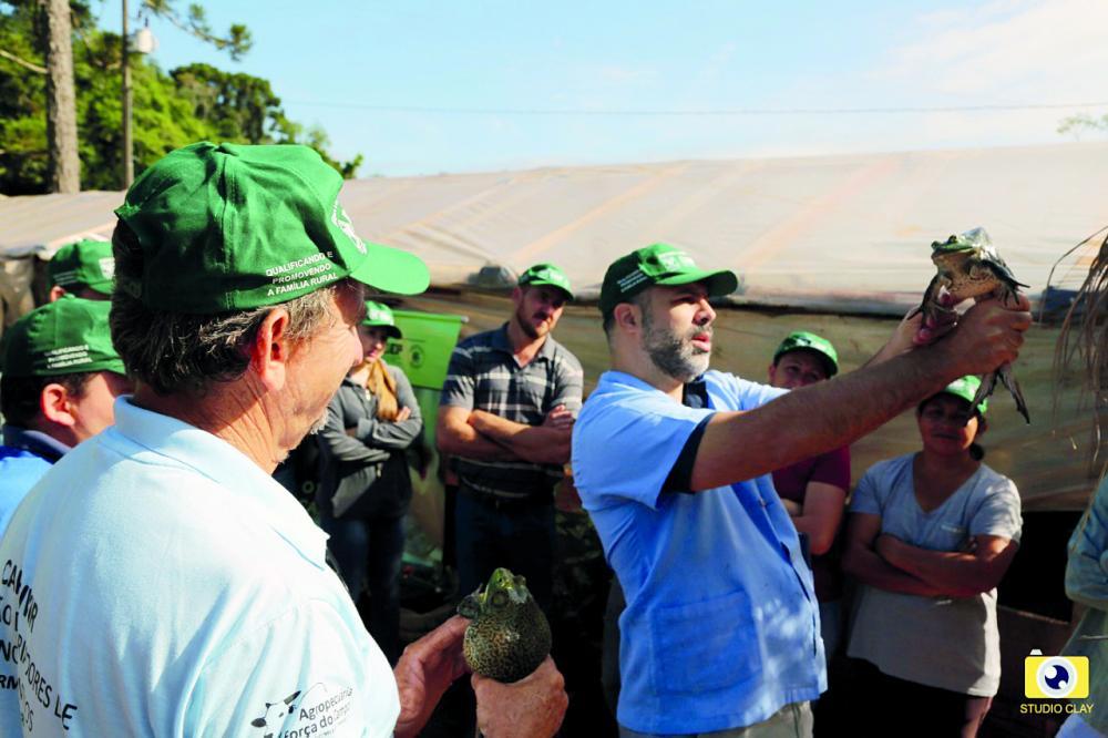 O curso tem 24 horas-aula, divididas em três dias e aborda aspectos teóricos e práticos da ranicultura, desde noções básicas até técnicas mais avançadas de manejo.