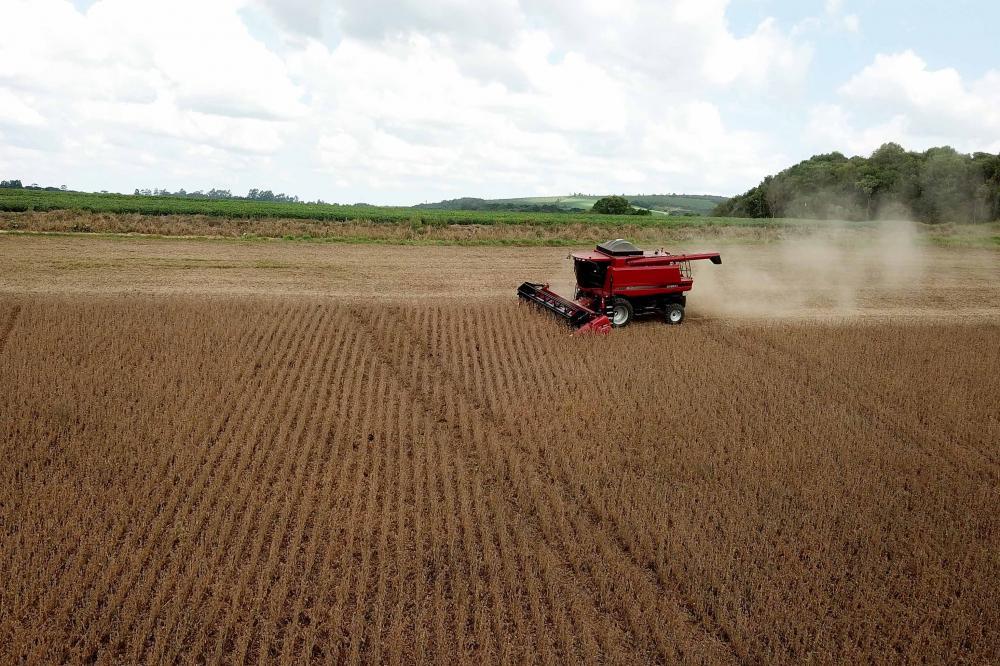 O trabalho do CESB é ajudar a sojicultura a crescer ainda mais e, assim, s aumentar a média da produtividade nacional.