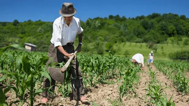 A expectativa do Governo Federal com a aprovação da MP 910 é que cerca de 600 mil famílias possam receber seus títulos da terra, no período de três anos.