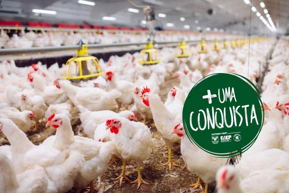 """""""O governo do Estado foi sensível ao nosso pedido para continuidade do Programa Tarifa Rural Noturna, ainda mais neste momento em que os produtores precisam produzir para garantir o alimento à população. Foi uma decisão acertada, que o setor produtivo rur"""