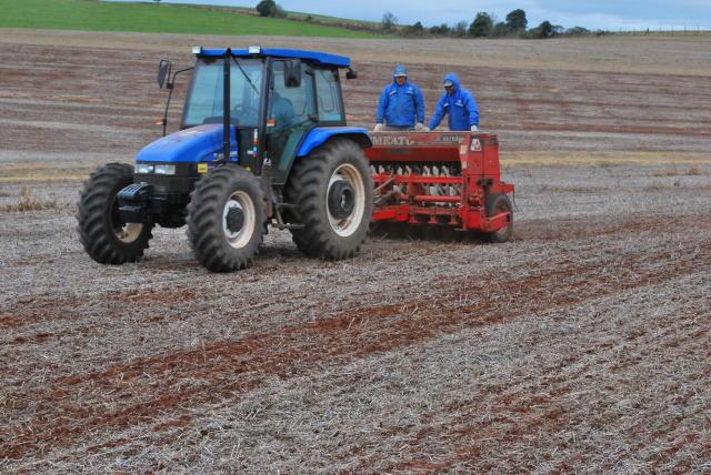 Avaliar o residual de fertilizantes no solo pode representar economia na implantação das lavouras de inverno.