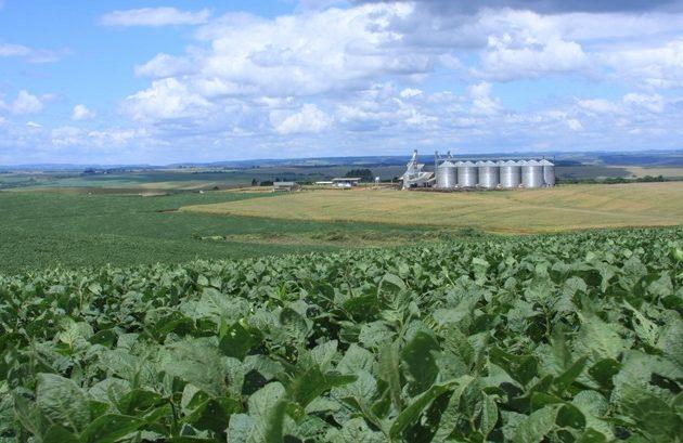 A orientação decorre do fato de que, mesmo em face da pandemia, o agronegócio não pode parar, pois trata-se de atividade essencial a produção de alimentos.