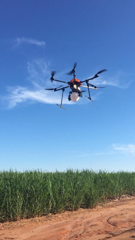 A utilização dos drones permite a liberação em grandes áreas de culturas como soja, milho e algodão, com rendimento de 200 a 350 ha/dia, além de não utilizar a infraestrutura de equipamentos do produtor.