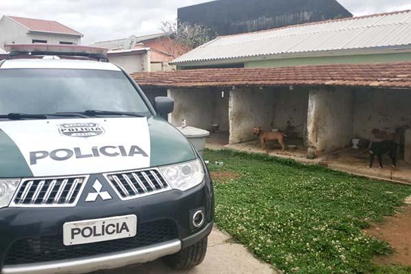 A proposta do Código Estadual de Direitos dos Animais no Paraná