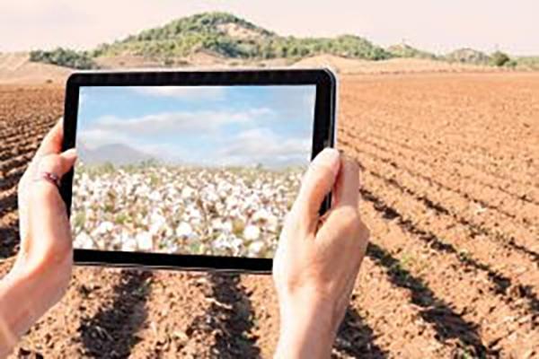 Chega ao mercado nova plataforma web para a comercialização de commodities agrícolas